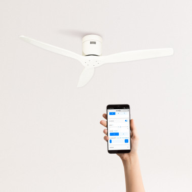 Buy WINDCALM DC - Ultrasilent Ceiling Fan with Winter - Summer Function